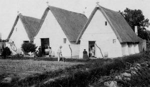 """Conjunto de Barracas en la huerta valenciana. Fuente: Rosa Pastor.""""El Cabanyal: Lectura de las estructuras de la edificación. Ensayo tipológico residencial 1900-1936"""" (Tesis doctoral)."""